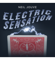 Electric Sensation by Neil Jouve (Red Bicycle Back)